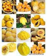 15 Seeds Yellow Fruits Mix - $19.96