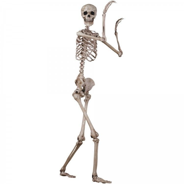 Scary Halloween Decorations Indoor Props Skeleton Real Size Figure Party Kit
