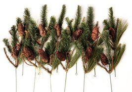 CraftMore Set of 12 Wild Wood Pine Picks image 3