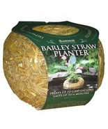 "Barley Straw Floating Planter Medium, Pond Water Treatment 3.25"" x 6 Inch - $24.70"