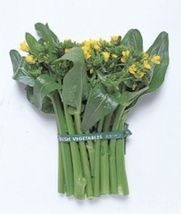 SHIP From US, 25 Seeds Yu Choy Sum (green stem), DIY Healthy Vegetable AM - $18.99