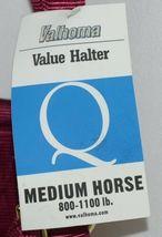 Valhoma 811QBU Burgundy Medium Horse Halter Eight to Eleven Hundred Pounds image 4