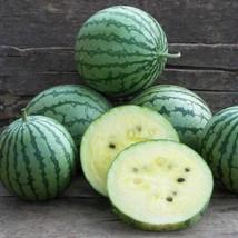 SHIP FROM US 5 Grams Seeds Organic Cream Watermelon,DIY Fruit Seeds RM - $20.99