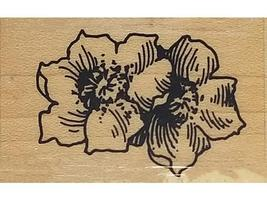Stampendous Wild Roses Rubber Stamp #J64