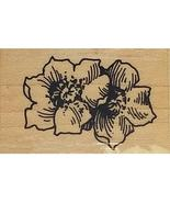 Stampendous Wild Roses Rubber Stamp #J64 - $7.99