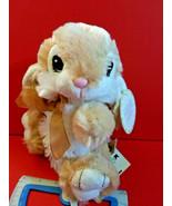 Tan Bunny Plush Toy Dan Dee Easter Holiday Rabbit Stuffed Animal Soft Ne... - $6.64