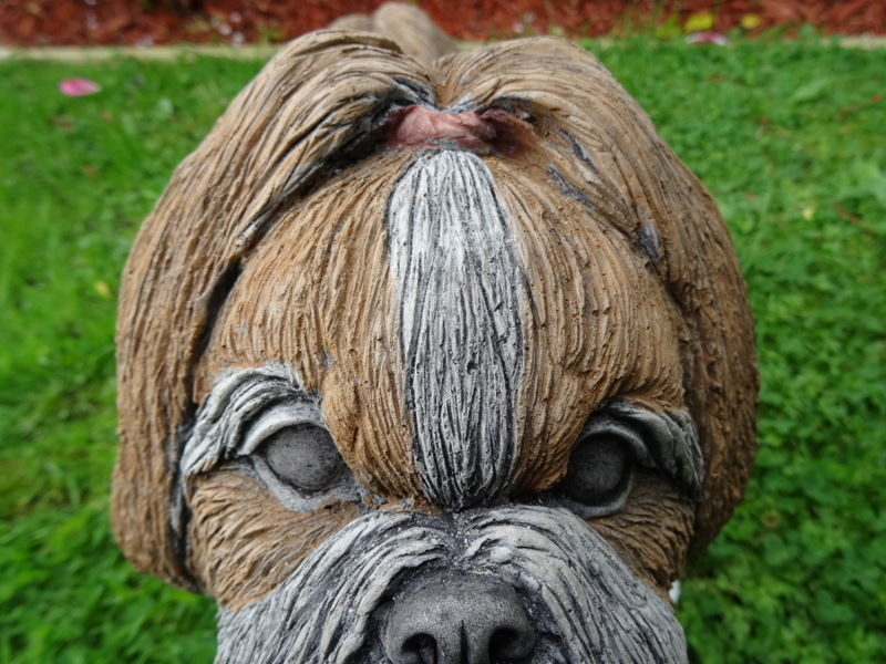 Pair Vintage Lifesize English Stone Shih Tzu Dog Garden Statues Brandy  Biscuit