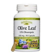 Natural Factors - HerbalFactors Olive Leaf 500mg, Support for the Body's Defense