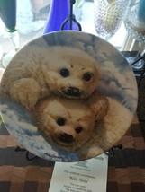 Baby Seals Bradford Exchange Porcelain Collector Plate LNIB - $11.83