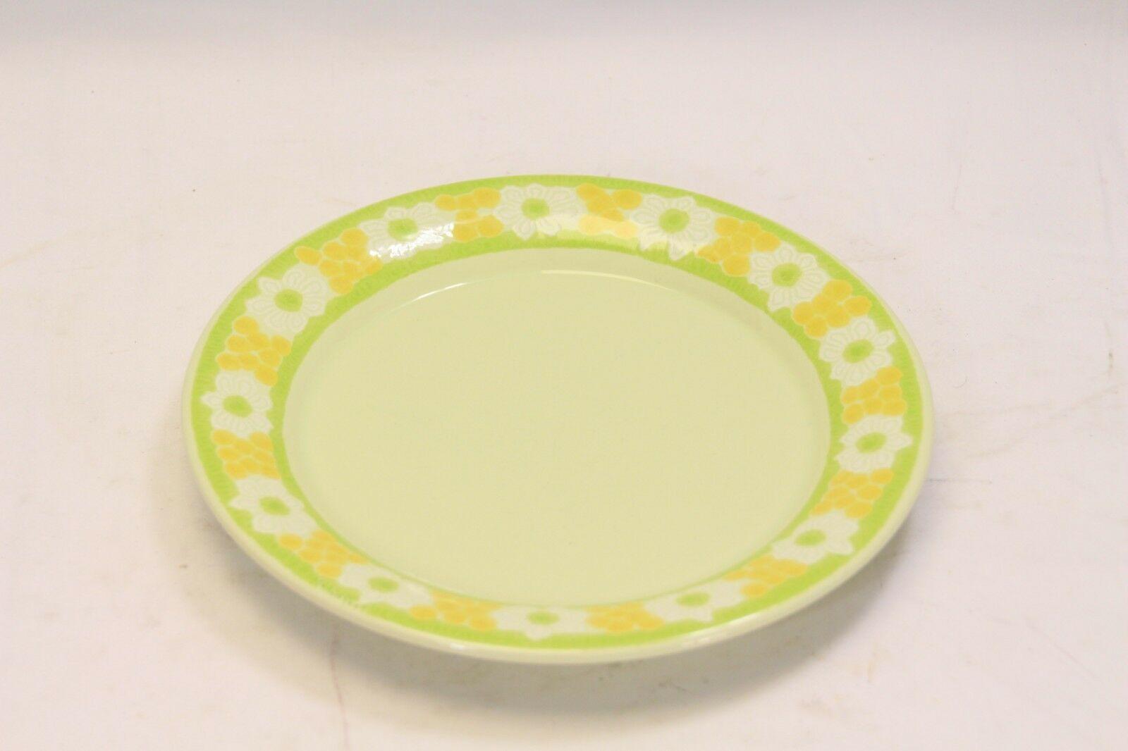 Franciscan Picnic Bowls Cups Saucers Salad Plates 10 pc