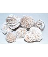 1 lb Desert Rose Selenite Flowers bulk gemstone lot - $14.99