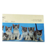 Springbok Kitty Kitty Kitty Panoramic 700 Pieces Puzzle Complete - $10.88