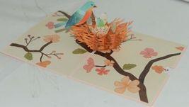 Lovepop LP2392 Birds Nest Pop Up Card  White Envelope Cellophane Wrapped image 3
