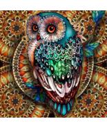 5D Diamond Painting Teal Feather Owl Kit - $14.99+