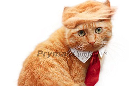 Prymal Comfort Trump Cat Costume and Tie for Halloween, Parties and Pictures