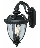 Classy Clear Water Glass Outdoor Wall Lantern Light in Black Finish - $144.94