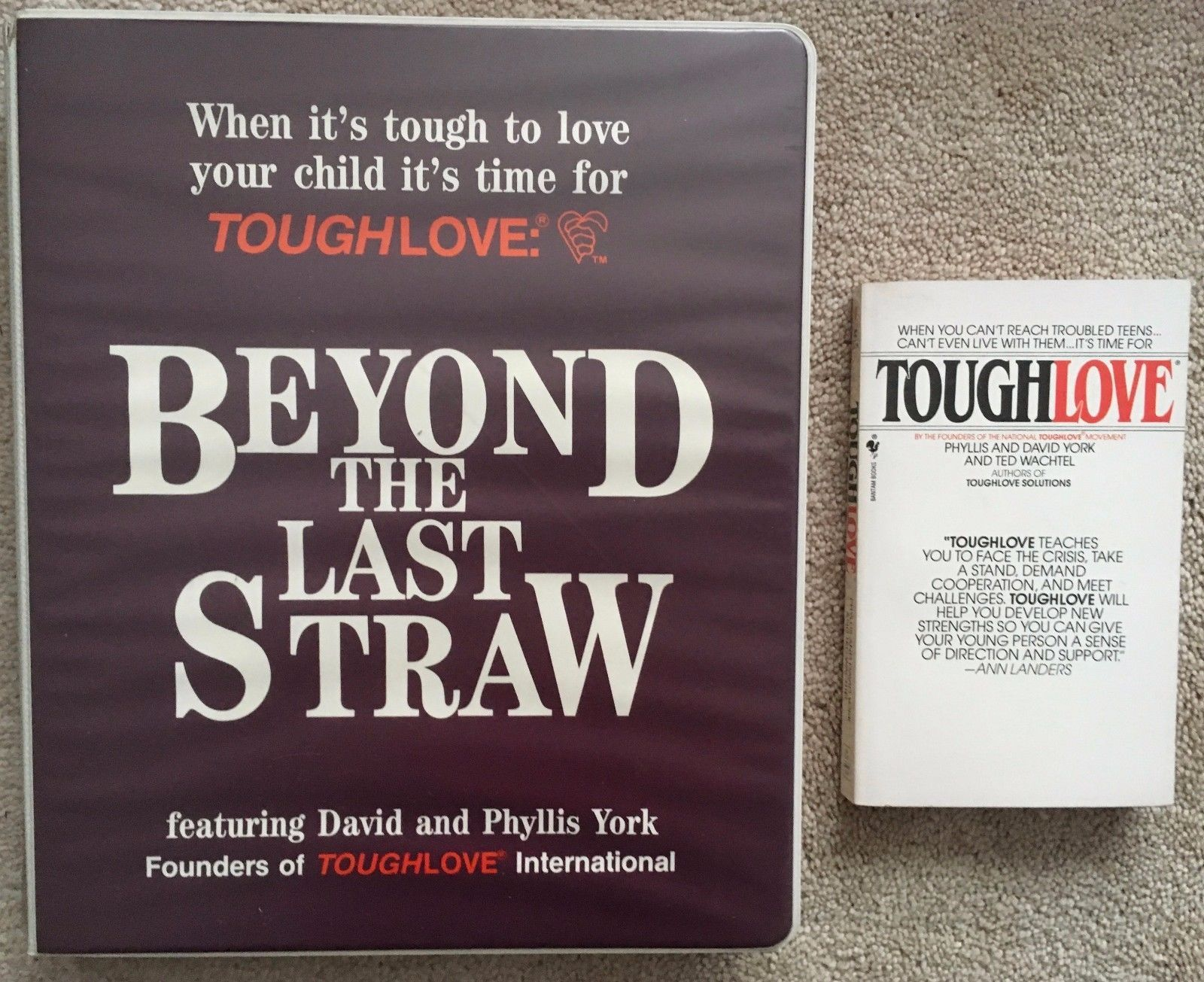 Lot 2 Toughlove: PB book + Beyond the Last Straw cassettes David & Phyllis York