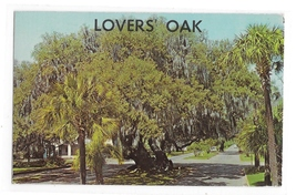 Lovers Oak Brunswick GA 900 yeer Old Tree CL Marsh Photographer Vintage Postcard - $4.99
