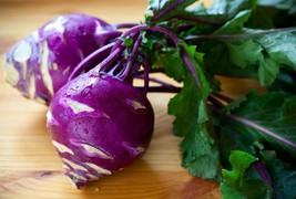 Kohlrabi Purple Vienna Non GMO Heirloom Garden Vegetable Seeds Sow No GM... - $1.97+