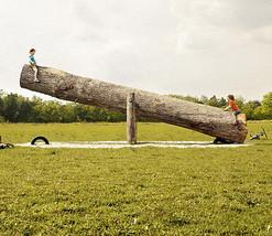 3D Das Holz der wippe 444 Fototapeten Wandbild Fototapete BildTapete Familie DE - $52.21+