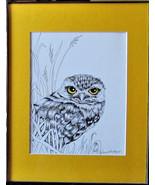 Burrowing Owl, Original Pen and Ink, Framed, matted, Bird Art, Free Ship... - $72.00