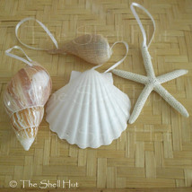 Seashell Christmas Ornaments Shell Natural Beach House Mermaid Nautical ... - $10.99