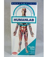 SKILCRAFT HUMAN LAB ANATOMY VISIBLE MAN PLASTIC MODEL KIT NEW! - $39.59