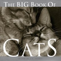 The Big Book of Cats [Hardcover] [May 01, 2004] Suares, J.C. - $1.98
