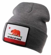 Team Phun Gray Republic Of Phun California Bear Surfing Fold Cuff Knit Beanie NW image 1