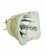 Optoma BL-FU465B Philips Projector Bare Lamp - $469.99