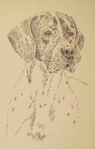 Pointer English Dog Art Print #40 Black Kline Adds Dogs Name Free Word Drawing - $49.95
