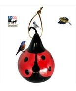LADYBUG GOURD BIRDHOUSE - Handmade & Painted Natural Wren Bird House Ami... - $48.97