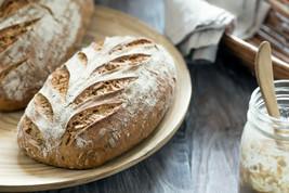 Gluten Free Mature Sourdough Starter Culture - 76 gram-1/2 cup!!! Live s... - $11.88