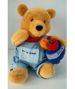 Disney Store Winnie the Pooh Bear 'Back to School' Soft Plush Stuffed Do... - $11.82