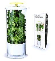 Herb Keeper Storage Asparagus Celery Parsley Container Extra Large Saver NEW image 1