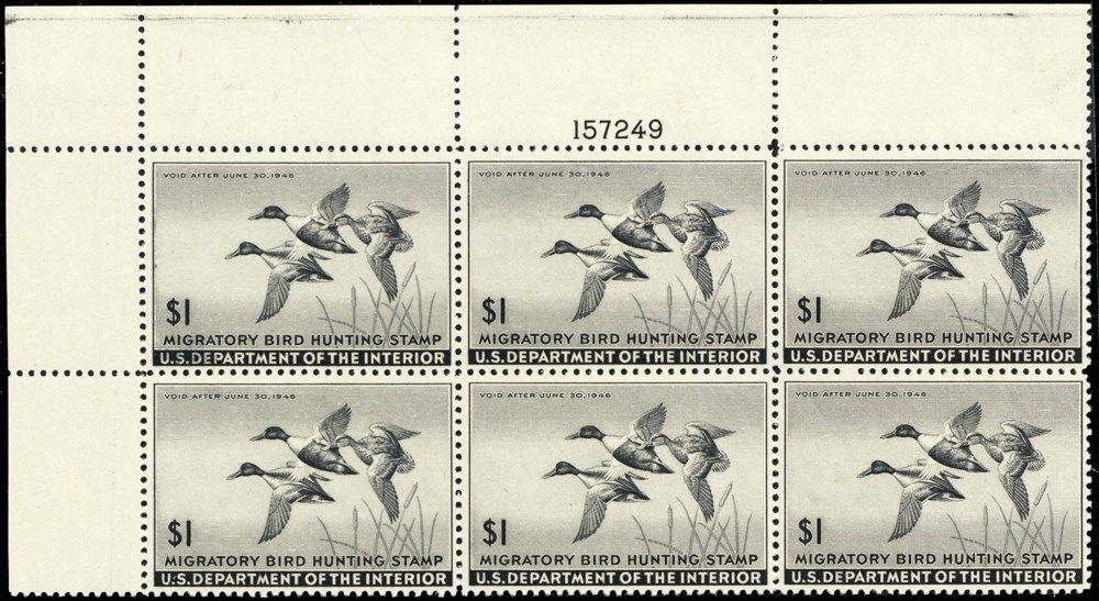 RW12, VF NH $1 Duck Plate Block of Six Stamps Cat $600.00 - Stuart Katz