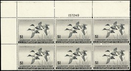 RW12, VF NH $1 Duck Plate Block of Six Stamps Cat $600.00 - Stuart Katz - $350.00