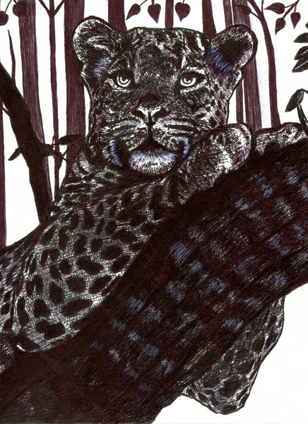 leopard tree drawing original art pen ink animal illustrations black and white