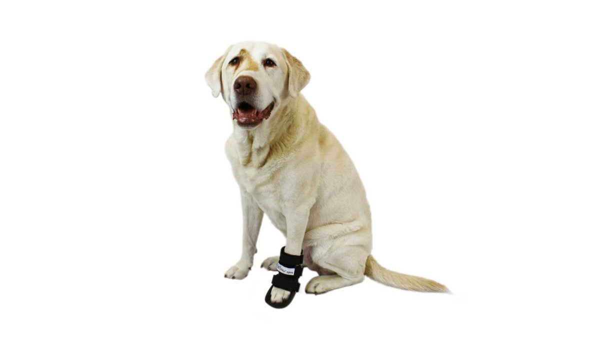 Primary image for Pet Splint for Dogs | Dog Bootie Style Foot Splint For Dogs with Arthritis and I