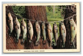 VINTAGE Curteich Fishing Scenes Linen Postcard Fishing Bend Oregon UNUSED - $8.88