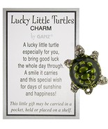 Lucky Little Turtle Pocket Charm - $2.92