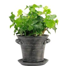 "Window Garden Rustic Charm 6"" Planter - Fine Home Décor Ceramic Indoor D... - €19,61 EUR"