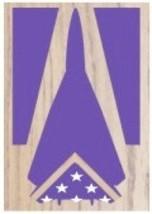 Air Force General Dynamics F-111 Aardvark Award Shadow Box Medal Display Case - $270.74