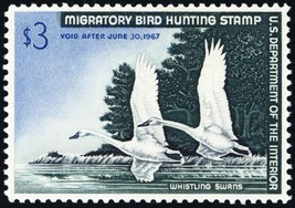 RW33, Whistling Swans $3.00 Federal Duck Stamp Superb NH --- Stuart Katz - $69.00