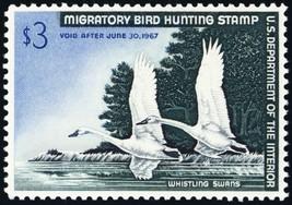 RW33, Whistling Swans $3.00 Federal Duck Stamp Superb NH --- Stuart Katz - $69.00