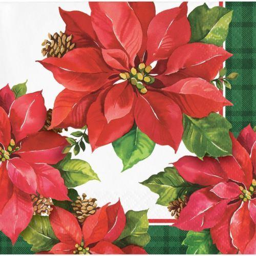 Christmas Poinsettia Paper 16 Ct Beverage Napkins