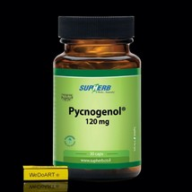SUPHERB Pycnogenol 120 mg 30 capsules for Young, Fresh and Healthy Looki... - $68.31