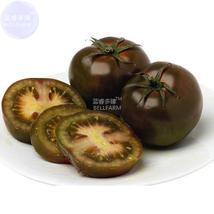 BEST PRICE 100 Seeds Large Black Organic Tomato,DIY Vegetable Seeds E433... - $4.99