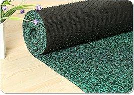 Black/Green Non Slip Runner Entrance Mat for Lobbies and Indoor Entrance... - €75,68 EUR