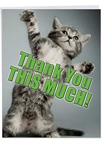 3-Pack of Large 'Kitten Thank You This Much' Thank You Cards with Envelo... - $21.64